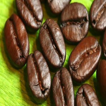 fornitori di chicchi di caffè verde indiano