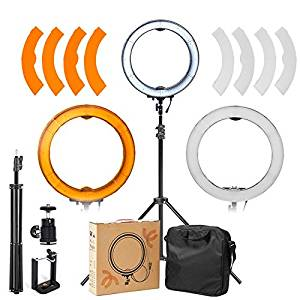 ASHANKS Ring Light With Stand 12in Camera Photo/Video 240 LED MSD 5500K Dimmable Ring Fluorescent Flash Light Lighting Kit for,Fashion Photography and Youtube Vine Self-Portrait Video Shooting(Black)
