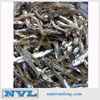 HOT !!! TOP SALE WITH Dried Anchovy (sprat) Whatsapp: ( +84) 916800732 CHEAP with high quality & the best price