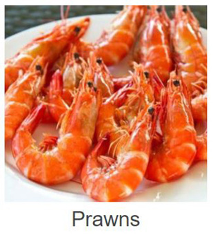 United States Best Quality Red Live Fresh Water Prawn For Hot Sale - Buy  Prawn,Fresh Water Prawn,Live Prawn Product on Alibaba com