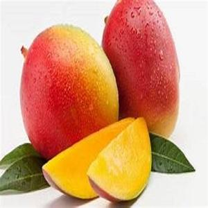 TOP WHOLESALE Fresh Mangoes