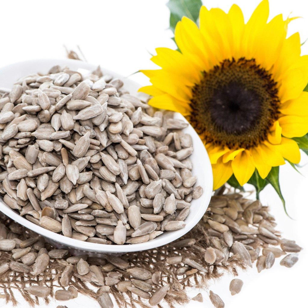 Dried Black Striped Sunflower Seeds And