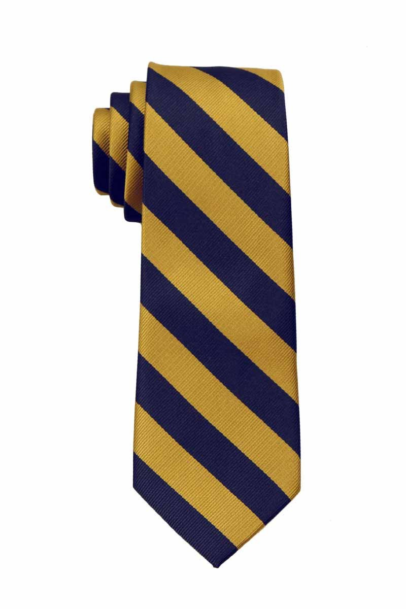 Boys Regular Repp Stripe College Printed Necktie Ties - Many Colors Available