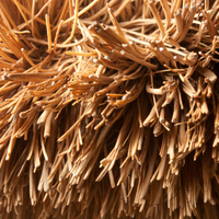 fibre - bristle - Whole Sale -for Brush and Broom Manufacturer