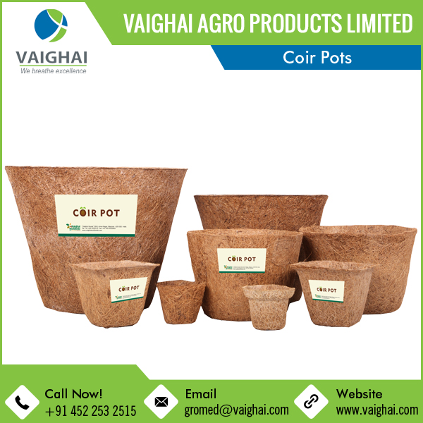 2017 Hot Selling Hydroponic System Coir Pots