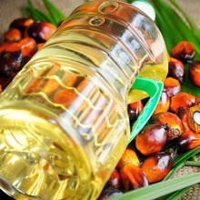 Refined Palm Oil For Cooking /Palm Kernel OIl CP10