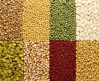 Red and Green lentils/Chickpeas/Yellow Lentils Split and Whole Red Lentils for sale