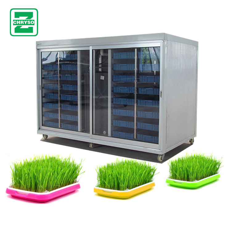 100kg/day multiple boxes Green Seeds Grow Automatic Bean Sprout Machine