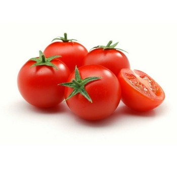 Hot sale red fresh tomato