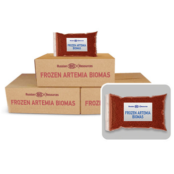Frozen Artemia biomass - fish feed from manufacturer
