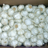 /product-detail/fresh-normal-white-garlic-thailand-garlic-big-size-garlic-62006792152.html