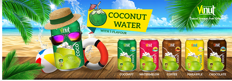 Famous VINUT Brand Organic Coconut Water Wholesale,Export