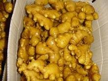 Wholesale Organic Fresh Ginger for Sale/bulk fresh ginger/chinese fresh mature ginger