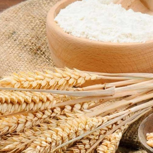 QUALITY WHEAT STARCH / WHEAT FLOUR
