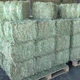Quality Timothy hay, Timothy pellets EU standard available