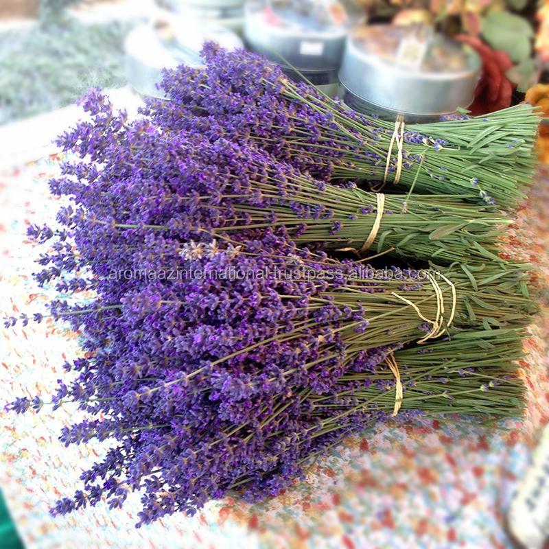 Лаванда купить в сургуте цветы