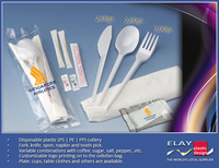 Disposable Plastic Dinnerware
