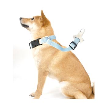 Pet Seat Belt >> Taiwan Pet Collars Car Safety Dog Seat Belt View Customized