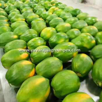 Red Lady Papaya Supplier / Wholesaler - Buy Papaya Fruits Supplier For  Juice Factories,Fleshy Papaya For Pulp Industries,Papaya Fruit For Making