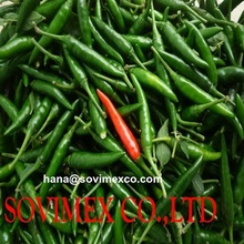 the best price for high quality chilli