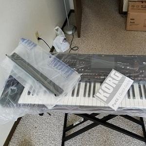 Free Shipping Korg PA1000 61 Key Professional Arranger Keyboard 61 Key  Digital Piano