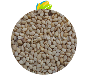 Roasted Black Or White Sesame Seeds For Cooking And Cold Salad for sale