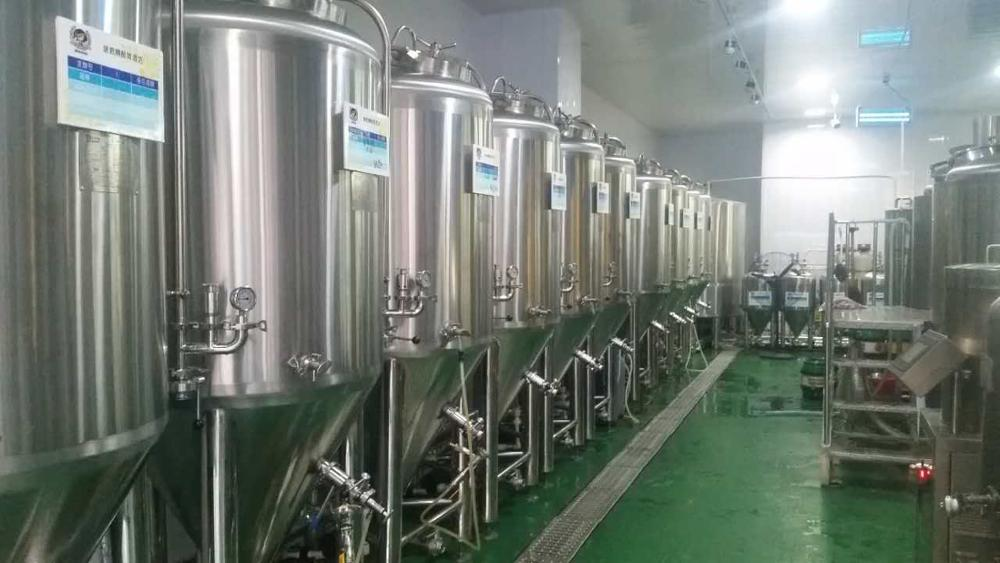 3hl 5hl Hotel Restaurant Two Vessels Brewhouse Microbrewery Equipment