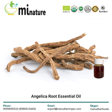 100% Natural and Pure Angelica Root Essential Oil