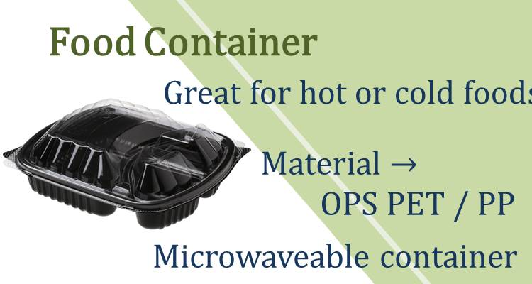 Disposable plastic container for food with lid