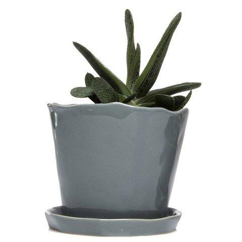 "Chive - Big Tika Succulent Planter - 5"" Ceramic Plant Pot with Drainage Hole and Saucer, Medium Grey"