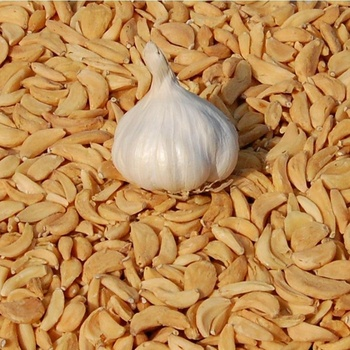 best supplier of Indian dried onion and garlic products
