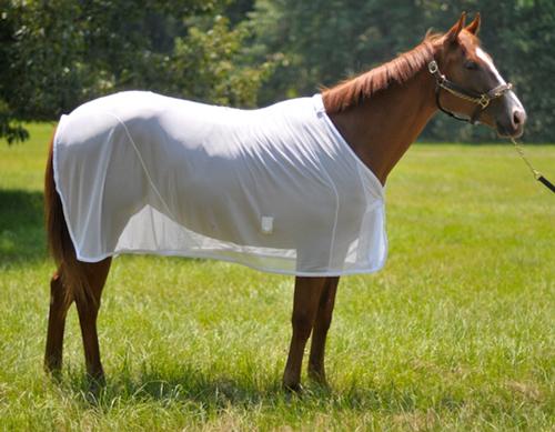 Mesh Horse Rugs Equestrian White