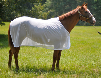 Mesh Horse Rugs Equestrian White Summer Rug India Polyester Fabric With Zebra Pattern Printing For Fly