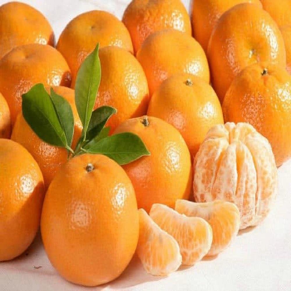 big-mandarin-pornripe-adult-channel