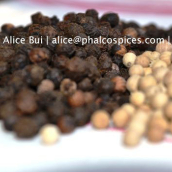 Light Berries Pepper 250gl Phalco Vietnam - Buy Black Pepper,Vietnam  Pepper,Pepper Product on Alibaba com