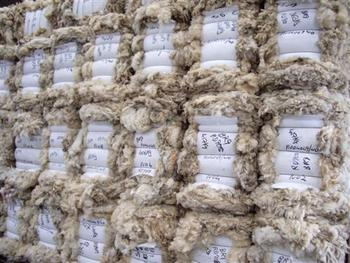 Best quality greasy merino wool raw sheep wool carded for Sheeps wool insulation prices