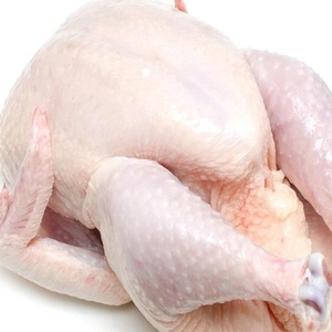 Frozen Chicken Feet & Chicken Paws, Breast & Whole Chicken available