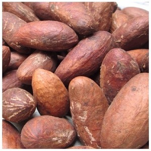 Bitter Kola Garcinia Nut, Bitter Kola Garcinia Nut Suppliers and