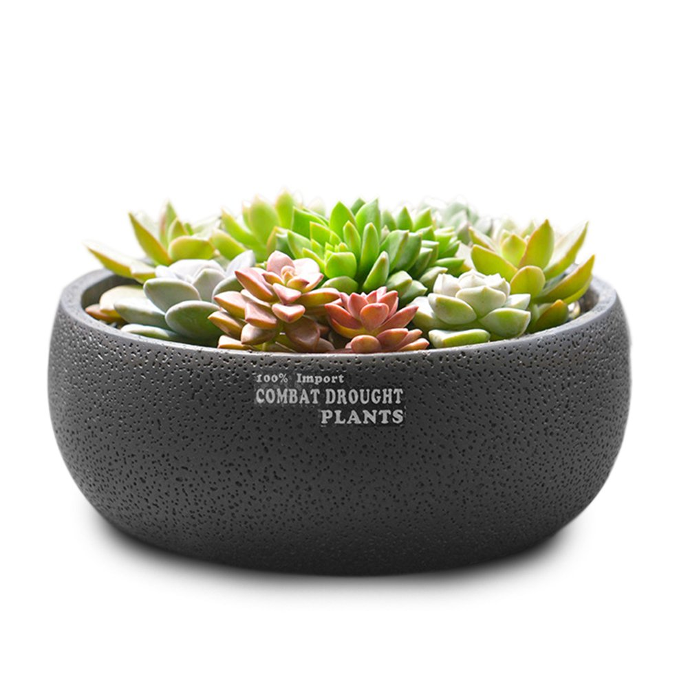 Cheap Clay Flower Planter Bowl Find Clay Flower Planter Bowl Deals