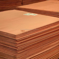 Grade A Electrolytic Copper Cathode For Sale