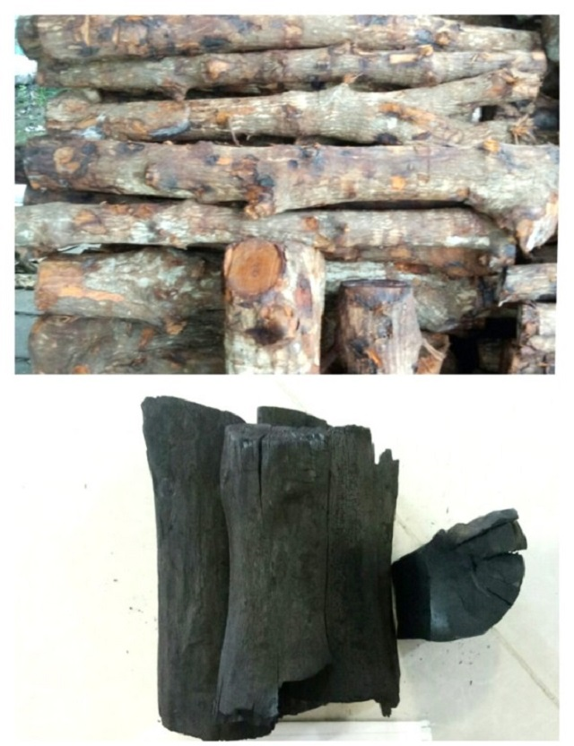 Mangrove Wood Charcoal From Vietnam - Buy Mangrove Charcoal,Wood  Charcoal,Wood Charcoal Market Product on Alibaba com