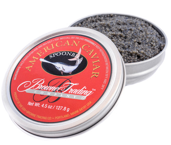 Paddlefish Caviar. BEST OFFER 2019!