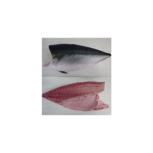 exceptionally fresh aqua blue yellowtail fillet round semi dress loin seafood export