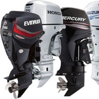 New/Used 2018 best authentic warranty for hot sale original Evinrude 2018 Evinrude E-TEC 30 HP E30DGTL Outboard Motor