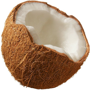 Dried Mature Coconut, Dried Mature Coconut Suppliers and