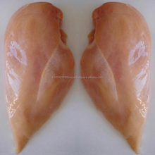 Halal Skinless Boneless Frozen Chicken Breast