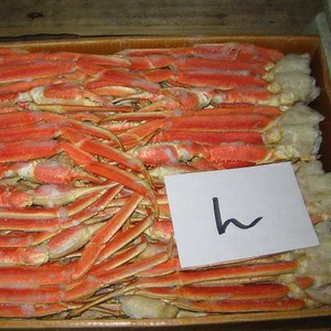 Snow Crab Cluster, Snow Crab Cluster Suppliers and Manufacturers at