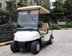 economic electric golf buggy 2 seats on promotion with real good price