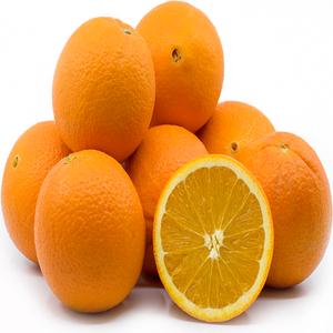 Fresh Oranges/Valencia and Navel Fresh Orange/Fresh Valencia Orange
