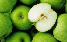 Organic Fresh Apple Fruits/Fresh Fuji Apples/Fresh Apples